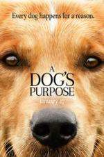 Watch A Dog's Purpose Online 123movies