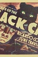 Watch The Case of the Black Cat Online 123movies