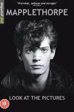 Watch Mapplethorpe: Look at the Pictures Online Putlocker