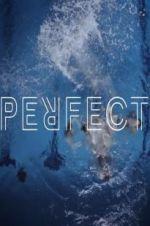 Watch Perfect Online Putlocker