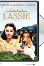 Watch Courage of Lassie Online Putlocker