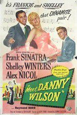 Watch Meet Danny Wilson Online Putlocker