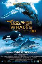 Watch Dolphins and Whales 3D Tribes of the Ocean Online 123movies