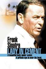 Watch Lady in Cement Online Putlocker