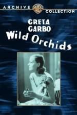 Watch Wild Orchids Online Putlocker