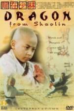 Watch Long zai Shaolin Online Putlocker