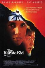 Watch The Karate Kid, Part III Online 123movies
