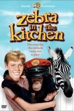 Watch Zebra in the Kitchen Online Putlocker