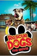 Watch Rescue Dogs Online 123movies