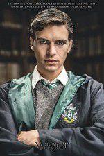 Watch Voldemort: Origins of the Heir Online Putlocker