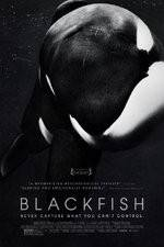 Watch Blackfish Online Putlocker