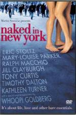 Watch Naked in New York Online Putlocker