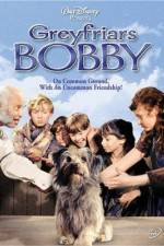 Watch Greyfriars Bobby The True Story of a Dog Online 123movies