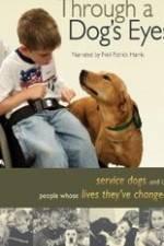 Watch Through a Dog's Eyes Online 123movies