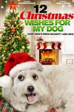 Watch 12 Christmas Wishes For My Dog Online Putlocker