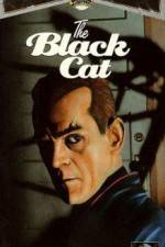 Watch The Black Cat Online Putlocker