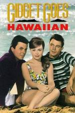 Watch Gidget Goes Hawaiian Online Putlocker