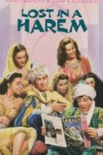 Watch Lost in a Harem Online 123movies