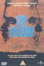 Watch Cry Freedom Online Putlocker
