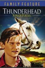 Watch Thunderhead - Son of Flicka Online 123movies