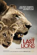 Watch The Last Lions Online Putlocker