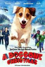 Watch A Doggone Christmas Online Putlocker