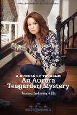 Watch A Bundle of Trouble: An Aurora Teagarden Mystery Online Putlocker