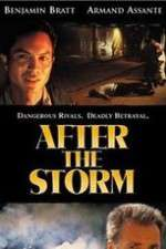 Watch After the Storm Online 123movies