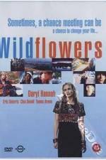 Watch Wildflowers Online 123movies