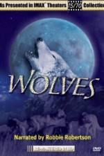 Watch Wolves Online Putlocker