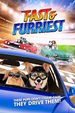 Watch Fast and Furriest Online Putlocker