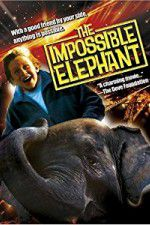 Watch The Incredible Elephant Online Putlocker