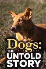 Watch 123movies Dogs: The Untold Story Online