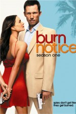 Watch Putlocker Burn Notice Online