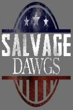 Watch 123movies Salvage Dawgs Online