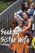 Watch Putlocker Seeking Sister Wife Online